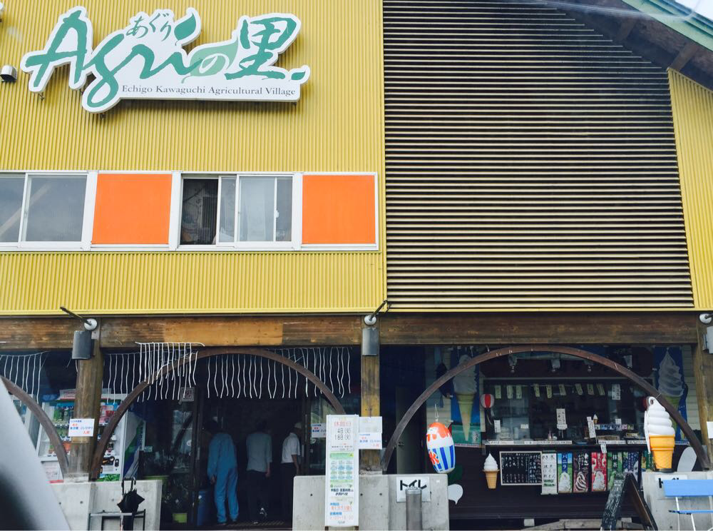 野菜直売所巡り「あぐりの里」と「けやきパーク」で秋の味覚ゲット!