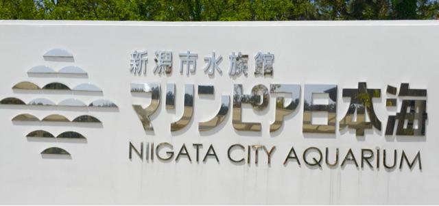新潟市の『マリンピア日本海』へ行こう!子連れでスムーズに入るおすすめの方法