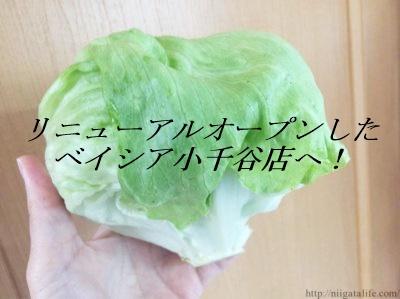 【Beisia×CAINZ】リニューアルオープンした「ベイシア小千谷店」へ行ってみました!
