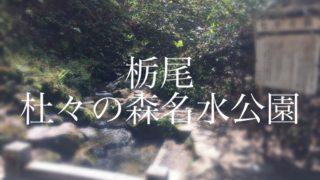 「杜々の森名水公園」で美しい水と豊かな森とを体感しよう!