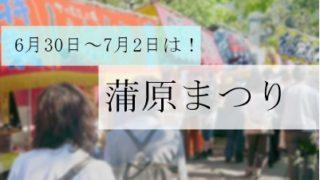 【新潟三大祭り】蒲原祭りの場所や時間と親子で楽しむための心得!