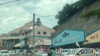 柏崎「日本海フィッシャーマンズケープ」へ海ドライブしよう!海の幸のお土産を買おう
