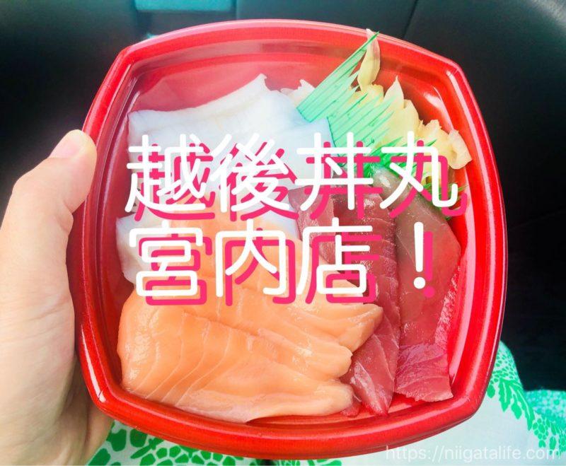 ワンコイン 海鮮 丼