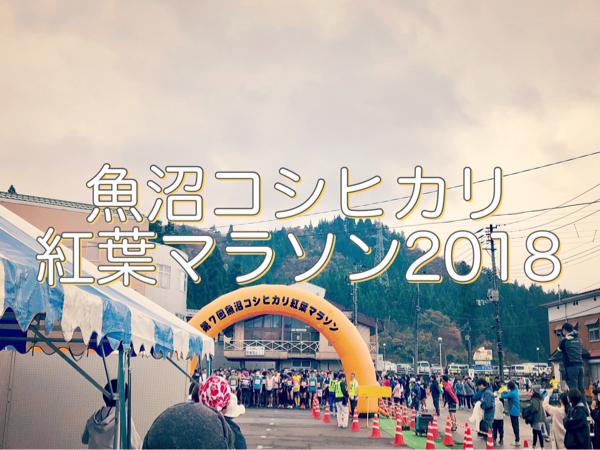 【大会レポ】魚沼コシヒカリ紅葉マラソン2018