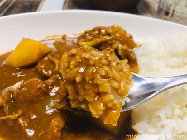 メイドイン燕「カレーを美味しく食べるスプーン」をダイソーで発見!普通のスプーンとの違いとは?
