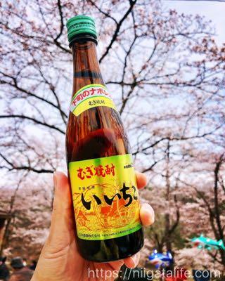 悠久山公園桜まつり2019