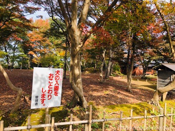 【見頃】もみじ園で紅葉満喫!新しい茶屋でほたる焼き!