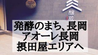 「発酵のまち、長岡」摂田屋編。吉乃川ミュージアムやフォトジェニックな街並み。