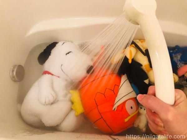 【ぬいぐるみの洗い方】ポケモン人形を洗濯してみた