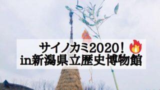 長岡の奇祭「サイノカミ」2020!小正月だからスルメを焼こうin新潟県立歴史博物館