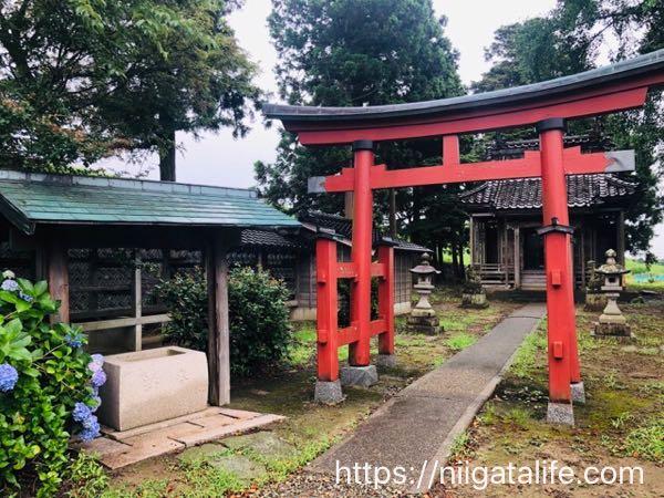"""""""寺泊のトトロ神社""""を探し求めて行ってみました!"""