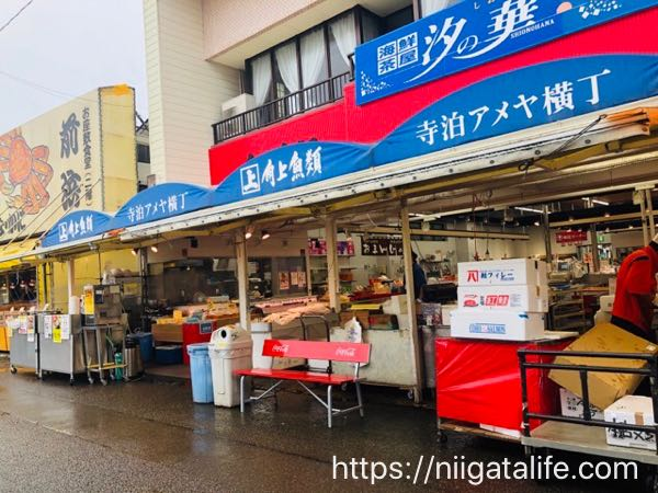 雨の日の寺泊も結構快適!お魚市場でくじら汁と宇宙人を食べた