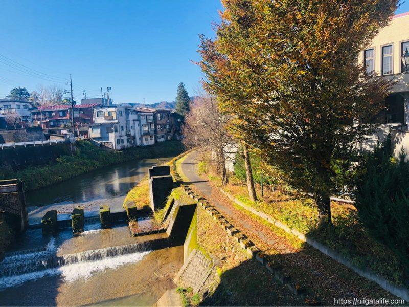 小千谷市内の街角写真 ニシキゴイがいっぱい