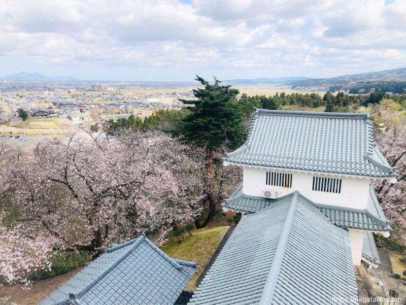 悠久山公園の城「郷土資料館」の展望台にのぼってみたよ!