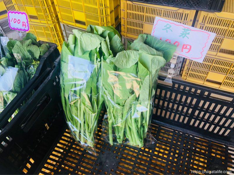 無人野菜直売所「ミノリ農園」