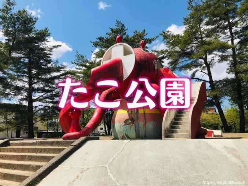 長岡のたこ公園