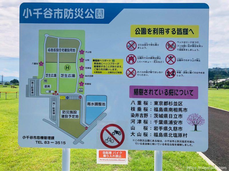 小千谷防災公園
